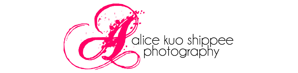 Alice Kuo Shippee Photography logo